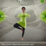 6 - single pose